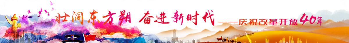 壮阔东方朔 奋进新时代—改革开放40周年