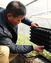 张道衡:让农户在我们的基地学会瓜果种植新技术