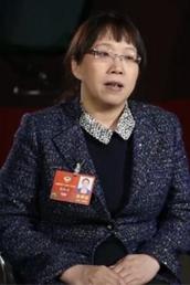 """赵红卫委员:自主化研发的""""复兴号""""点燃中国速度"""