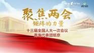 十三届全国人大一次会议青海代表团抵京