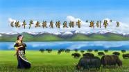 """青海牦牛产业提质增效 有了""""新引擎"""""""