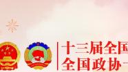 第十三届全国人民代表大会第三次会议青海代表团赴京