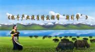 """青海牦牛產業提質增效 有了""""新引擎"""""""