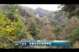 孟达:青藏高原的璀璨明珠