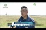 青海湖整体生态功能持续增强