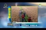 """【图说新闻】新媒体平台""""1号线上""""评选出2018""""最美揽夏地""""青海湖入选"""