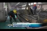 青海西豫有色金属有限公司:循环经济让企业焕发生机