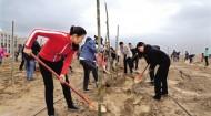 四月好时节 植树正当时 海西州各地掀起春季义务植树热潮