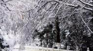 西宁迎来入秋以来第一场雪