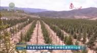 互助縣完成秋冬季植樹造林綠化面積351公頃