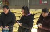【新春走基層 脫貧攻堅一線見聞】寧曲村:聚焦青稞產業扶貧 實現農戶增收致富