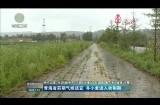 青海省前期气候适宜 冬小麦进入收割期