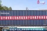 【复工达产加速度】青海省首次进口燕麦搭乘中欧班列顺利抵青