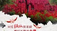 火红辣椒庆丰收  撒拉乡里话小康!