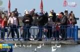 """""""大美青海 生态旅游邀你来""""新闻发布会在西宁举行"""