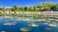 今年这些举措让西宁河湖更美