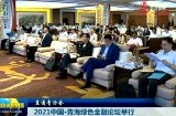 2021中国·青海绿色金融论坛举行