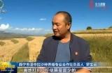 【关注第四个中国农民丰收节】湟中:金秋时节话丰收
