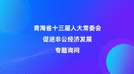 青海省十三届人大常委会促进非公经济发展美高梅美高梅官方网询问