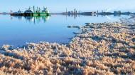 青海盐湖产业,翘首新征程