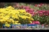 我们的节日·国庆 西宁人民公园:游园赏景欢度国庆