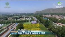休闲农牧业带动青海乡村游
