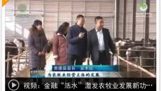"""金融""""活水""""激发农牧业发展新功能"""