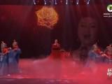 歌舞《撒拉尔之春》