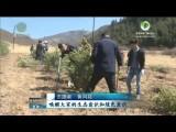 【不断提升大美青海绿色颜值】我省干部群众持续开展植树造林活动