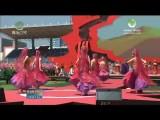 第三届丝路花儿艺术节暨河湟民俗文化节开幕