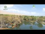 齐聚青海赏美景 共绘黄河旅游好图景