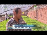 海东市加大力度推动农业转型升级
