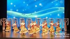 青海省老年大学在第六届全国老年大学文艺汇演中喜获佳绩