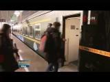 【奋进新时代 建设新青海】青藏铁路运能运量实现双增长