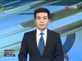 谢小平:争做水电工程和新能源领域的排头兵