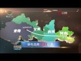 青海—河南±800千伏特高压直流输电线路工程青海段进入现场施工阶段