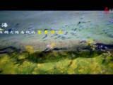 《一帶一路青海展宣傳片》30秒