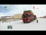 玉树军分区:在风雪中全力救助受灾群众