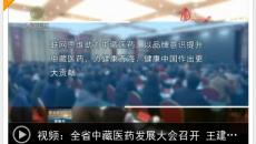 全省中藏医药发展大会召开 王建军提出工作要求 刘宁 于文明讲话