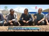 青海开展马铃薯种薯生产栽培管理技术培训