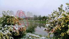 青海2019年夏季的第一场雪在这里下出了新境界……