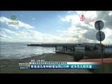 【2019青海湖湟鱼洄游季新闻直播精彩回放】青海湖鸟类种群增加到225种 成为鸟儿的天堂