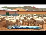 【夏秋季攻势专项行动】泽库:有机畜牧业产业园入选国家级创建名单
