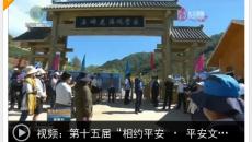 """第十五届""""相约平安 · 平安文化艺术节""""开幕"""