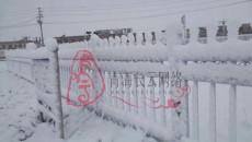 冷空气不期而至 我省部分地区雨雪交加