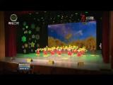 青海省舉辦紀念中國少年先鋒隊建隊70周年活動