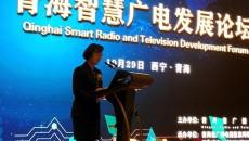青海智慧廣電發展論壇在西寧召開