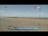 格尔木青新藏陆港商旅物流中心项目开工
