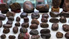 青海省2020年迎新春隕石文化交流會在西寧舉辦