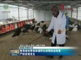 青海省林草局加强野生动物执法检查 严防疫情发生